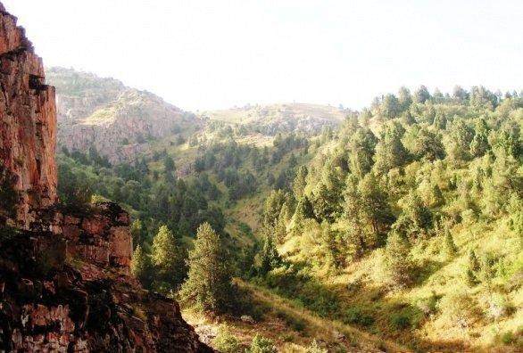 turbaza yangiaba 5 - Турбаза Янгиабад