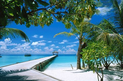 maldives ariatoll croped - МАЛЬДИВЫ+ОАЭ: ОЦЕНИ КАЧЕСТВО И КОМФОРТ!