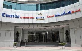 image35 - ДУБАЙ:  CASSELLS AL BARSHA HOTEL 4*