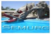 semurg 180x120 - Главная