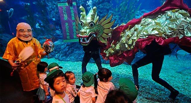 1329298933 okeanarium v bangkoke 3 - Бангкок