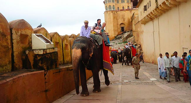 elephant ride at jaipur tli 5 - Агра