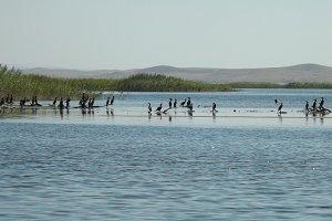 Тур на озеро Айдаркуль