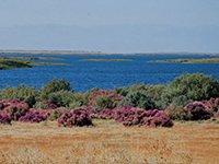 aydarkul - Тур на озеро Айдаркуль