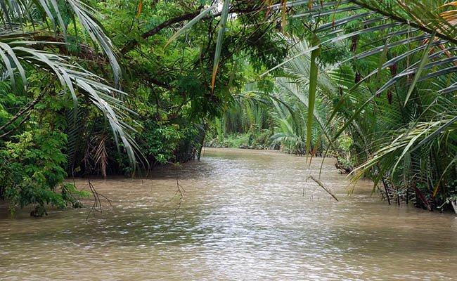 delta - Экскурсии по Вьетнаму