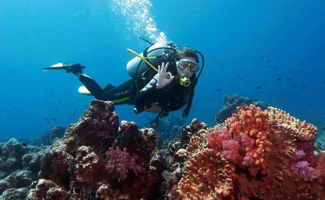 diving - Экскурсии по Вьетнаму