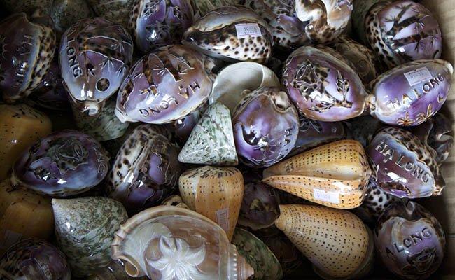 rakushki - Вьетнамские сувениры