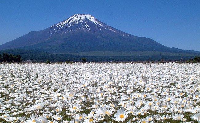 fudzi - Природа Японии