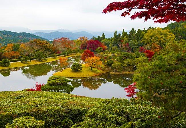 japanese garden - Природа Японии