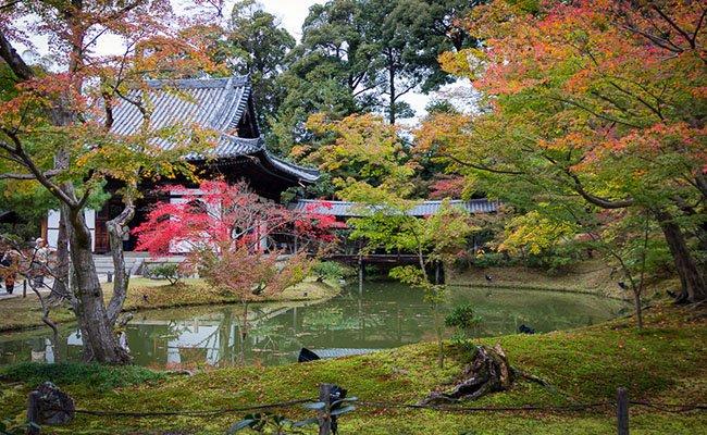 osen - Природа Японии
