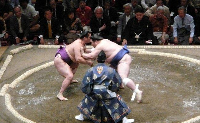 sumo - Боевые искусства