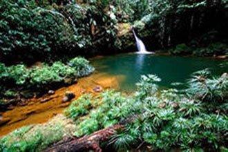 borneo 6 - Малайзия / о-в Борнео: отдых на любой вкус!