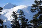 borovetz4 180x120 - Горнолыжный тур по Узбекистану «Горы Тянь-Шаня»
