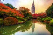 Большое путешествие по Японии