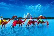 18978dd0 0343 4616 adcf 9c3b85dd9268 large 180x120 - Индия:  Аюрведический пляжный курорт Isola di Cocco, Ковалам, Керала