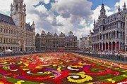 flower carpet brussels 0 croped 180x120 - ПУТЕШЕСТВИЕ ПО БЕНИЛЮКСУ:  АМСТЕРДАМ-БРЮГГЕ-БРЮССЕЛЬ-ЛЮКСЕМБУРГ