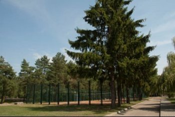 Беларусь: Санаторий «Белая вежа»
