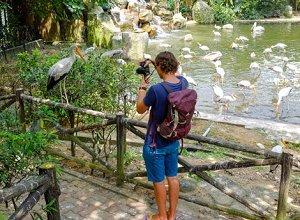 kl bird park croped - Путешествие в Малайзию