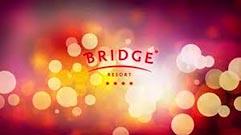 bridg9