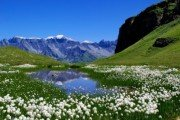 Природа Австрии