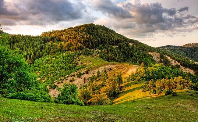Горы Родопы.