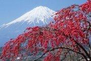 Экскурсия по Японии