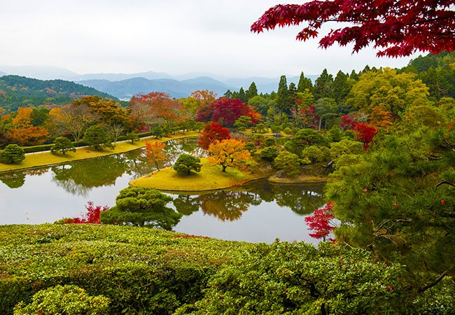 Японский сад в Киото.