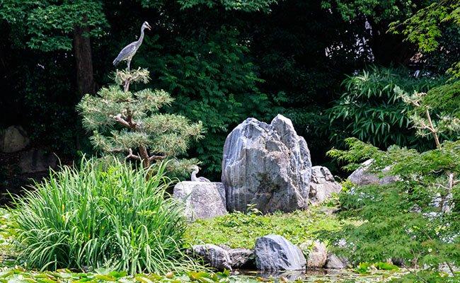 Сад камней в Киото.
