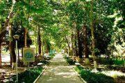 Санаторий Ботаника 4