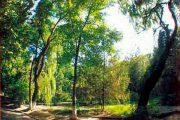 природа Чимиен